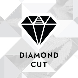 sacramento marketing company - Seed group - the seedgroup - diamond cut