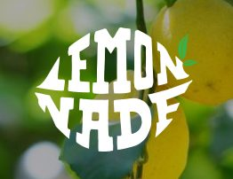 sacramento marketing company - Seed group - the seedgroup - lemonade