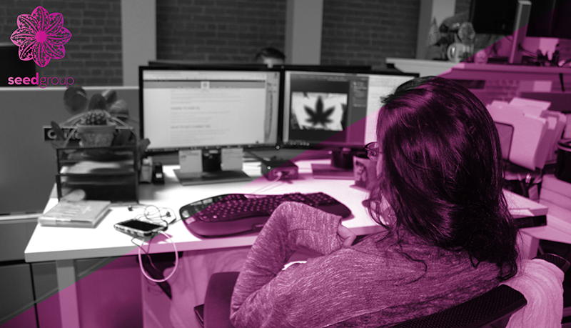 Seed Group - marketing agency in Sacramento - cannabis industry